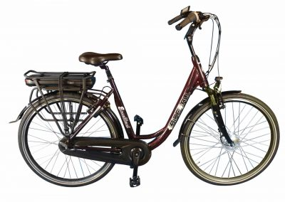 Ebike4all Excellent vanaf €1.799,-